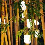 Set de 3 minis lampes BALAD Fermob